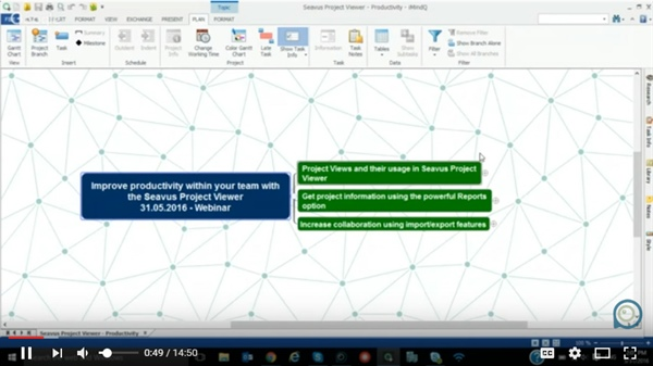 How to Improve Productivity Within Your Team With Seavus Project Viewer