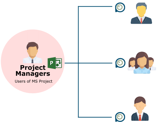 microsoft project viewer in the company
